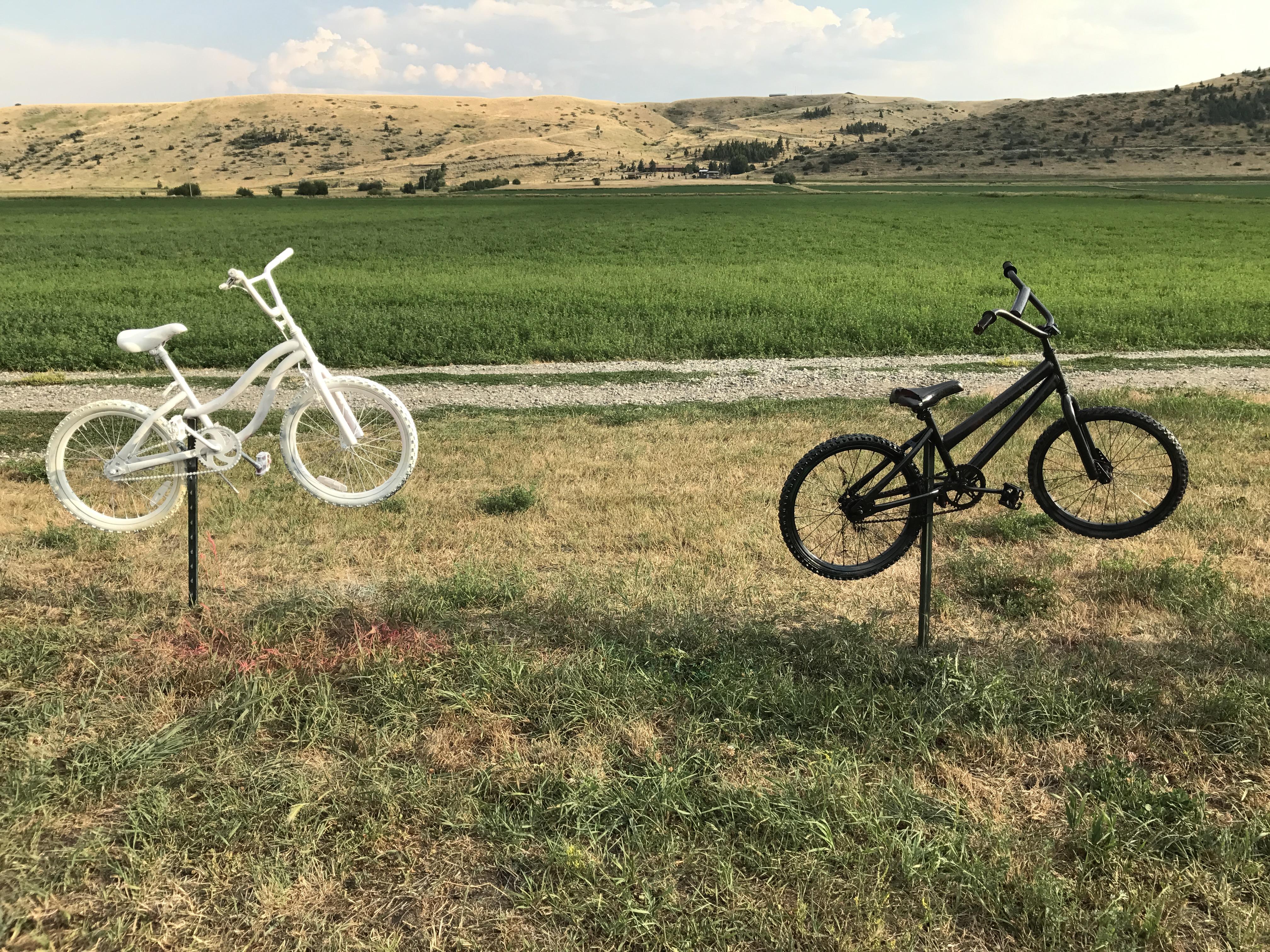Black White Bikes