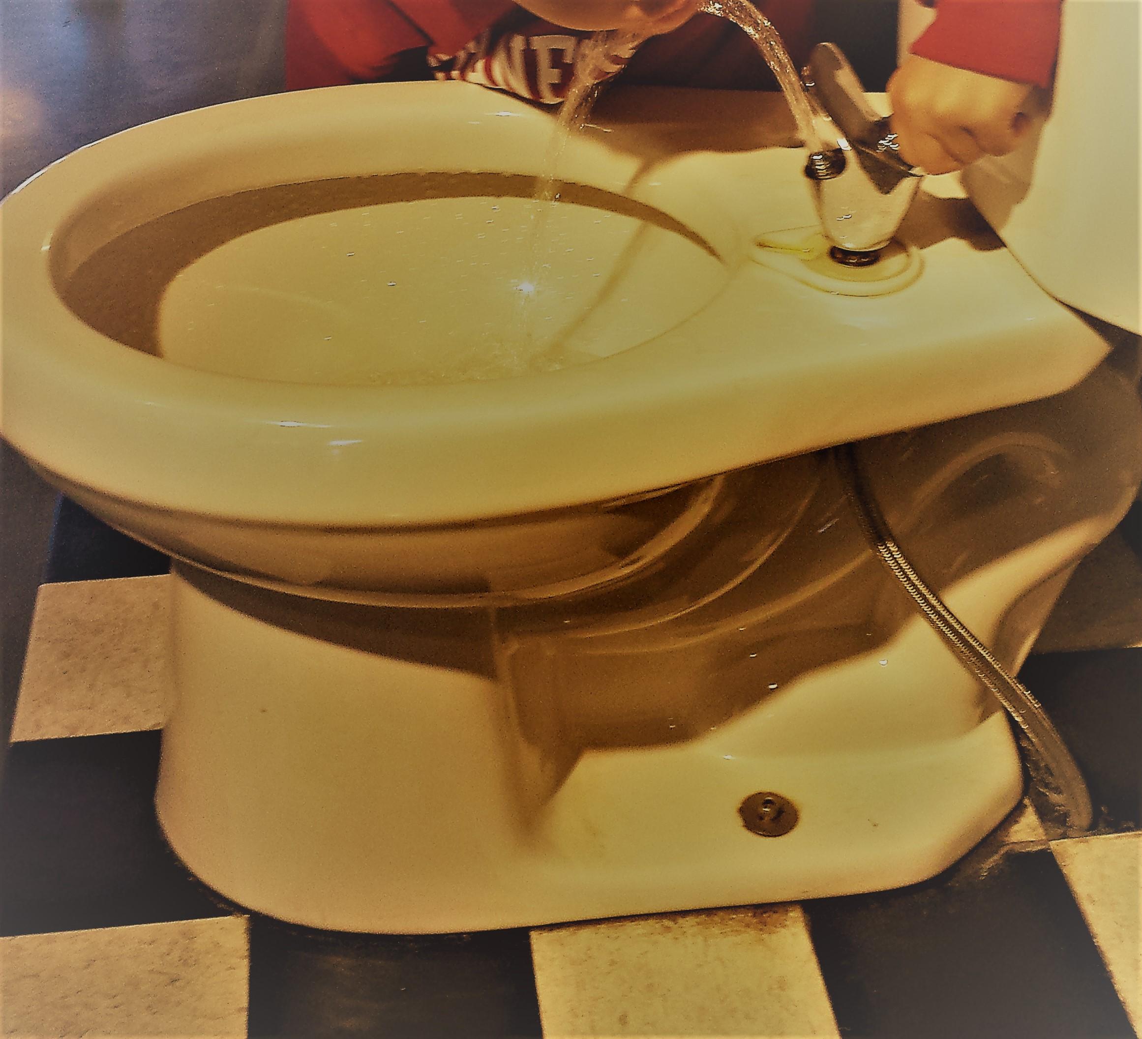 Toilet Drinking Ed