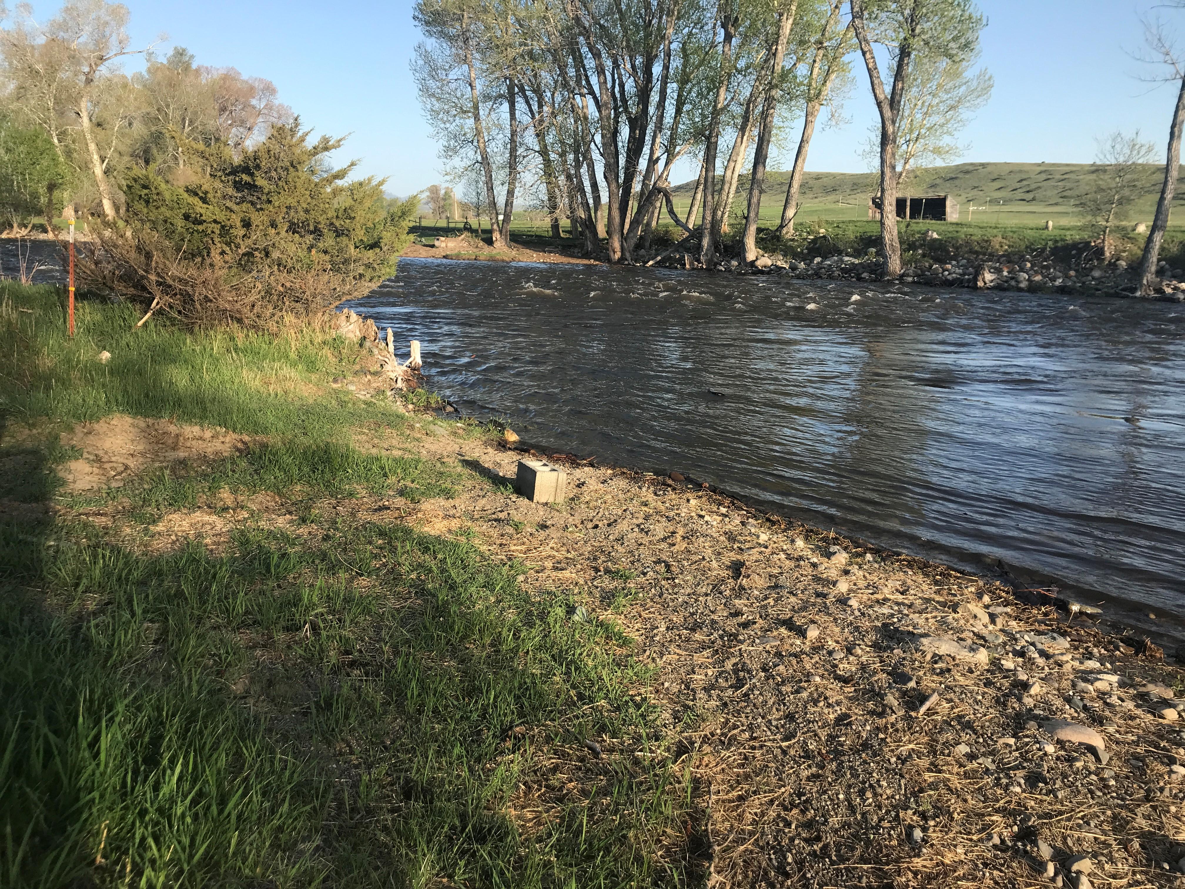 River Rising 2020