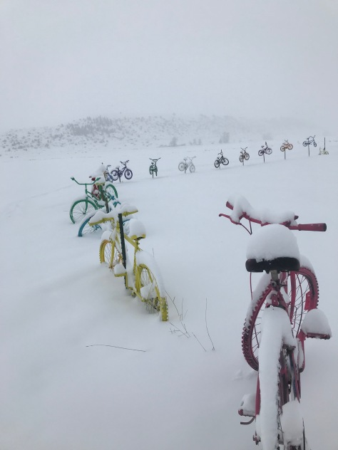 Bikes Snow 3